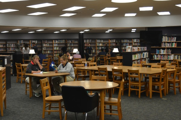 LIBRARY MAKEOVER -- Melinda Martin is working hard to freshen up the look of the Central High School Library.
