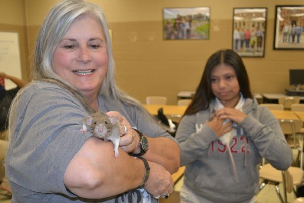 FREUD AND LEOPALD SHOW AP PSYCHOLOGY CLASS SOME LOVE -- AP Psychology teacher Tina Staton (left) and Yoselin Tesorero (right) interact with their furry subjects.