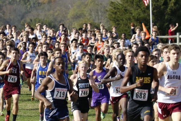 CROSS COUNTRY DOMINATES STATE -- The Cross Country team places 14th in state.