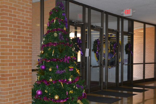 CENTRAL HIGH SCHOOL GETS IN THE FESTIVE SPIRIT BY PUTTING UP A PURPLE AND GOLD CHRISTMAS TREE-- The purple and gold Central High Christmas tree in front of the office