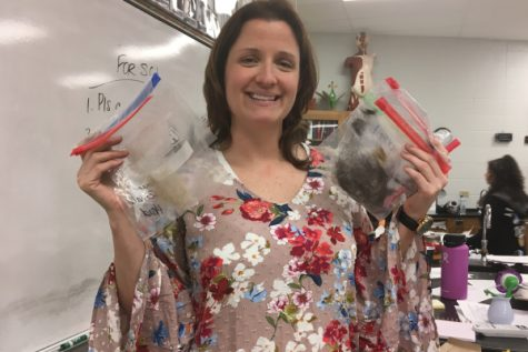 'Hair Wanted': Cotreau's 'Fur'ensic Class Analyzes Various Types of Fibers