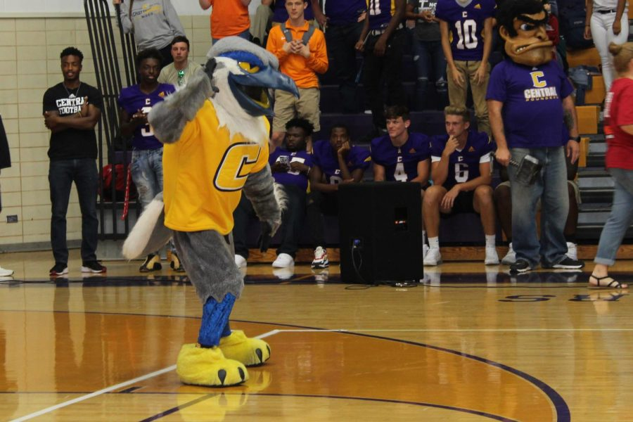 COLLEGE WEEK GETS STUDENTS EXCITED ABOUT THEIR FUTURES -- The UTC mascot, representing the Chattanooga Mocs, gets the crowd pumped for the pep rally.
