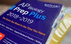 Rescheduled AP Tests to be Taken Online and at Home