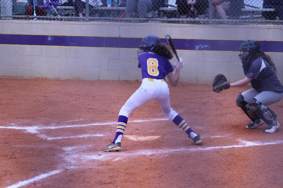 LADY POUNDERS STRUGGLE AGAINST EAGLES, RAMS, BUCS -- Junior Mischa Johnson hitting.